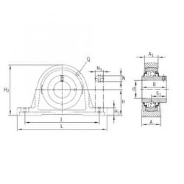 INA RASEY70 bearing units