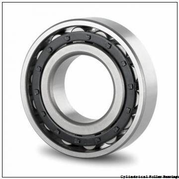 75 mm x 130 mm x 31 mm  Fersa NU2215FM cylindrical roller bearings