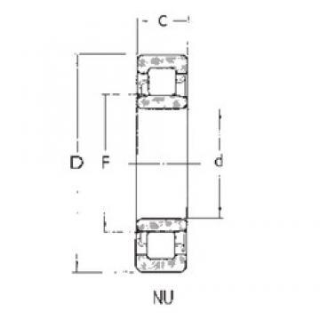 80 mm x 125 mm x 22 mm  FBJ NU1016 cylindrical roller bearings