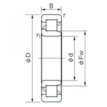25 mm x 52 mm x 18 mm  NACHI NJ 2205 cylindrical roller bearings