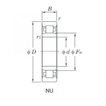 25 mm x 52 mm x 15 mm  KOYO NU205R cylindrical roller bearings
