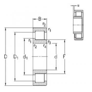 120 mm x 260 mm x 86 mm  NKE NJ2324-E-TVP3 cylindrical roller bearings
