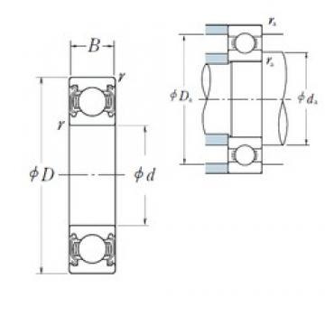 20 mm x 52 mm x 15 mm  NSK 6304ZZ deep groove ball bearings