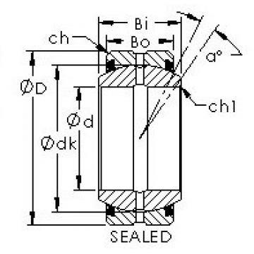 AST GE60ES-2RS plain bearings