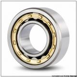 Toyana N28/710 cylindrical roller bearings
